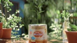 Mucilon plantará 1 milhão de árvores.