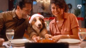 Ampfy aposta em ultra segmentação para o Natal de Perdigão.
