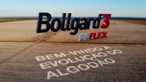 MRM Brasil cria nova campanha da Bollgard 3 RRFlex.