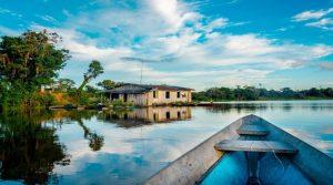 O Mercado Livre se une novamente a organizações da sociobiodiversidade para promover empreendimentos sustentáveis da Amazônia.